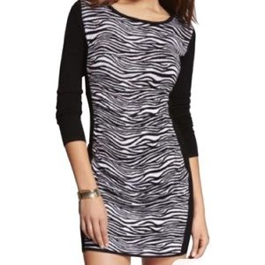 Express zebra print sweater dress